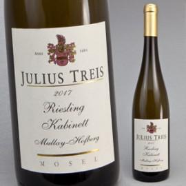 Riesling Mullay-Hofberg, Terrassen 2018, Weingut Julius Treis